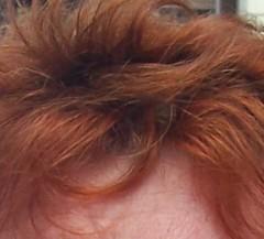 cheveux3.jpg